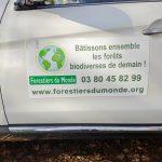Informations Forestiers du monde